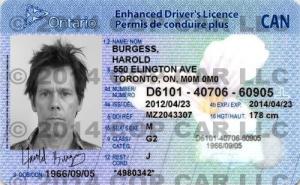 CC_KB_Ontario_ID watermark